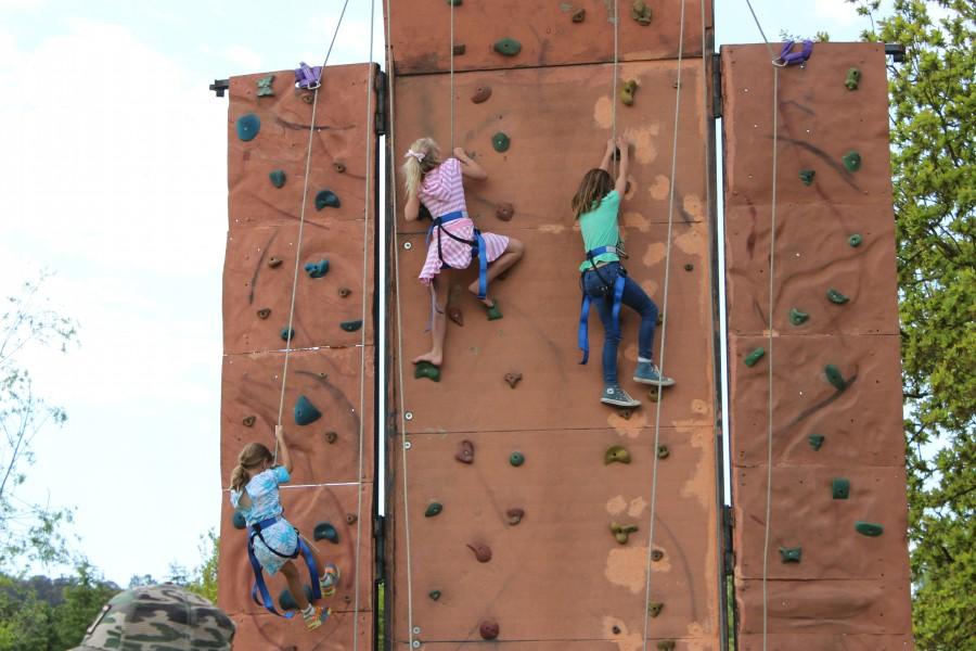 IMG_4954 Rock climbing wall